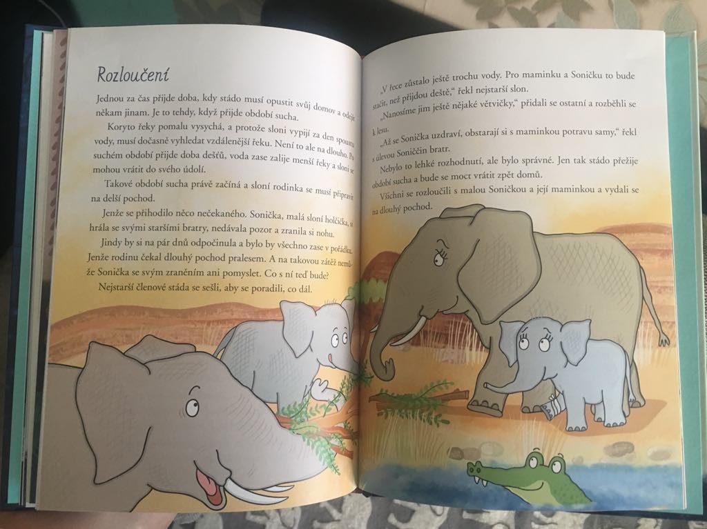 O Moudré Velrybě - slon